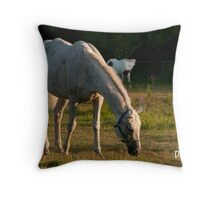 Our Morning Angel  Throw Pillow