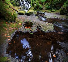 McCord Creek I by Tula Top
