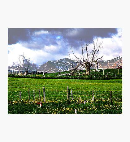 Broken Fences Photographic Print