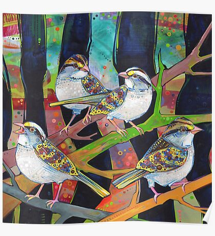 White-throated sparrows painting - 2012 Poster