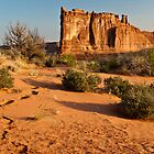 Foot Steps At Arches by Greg Summers