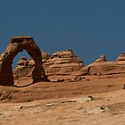 Delicate Arch - Arches National Park by Gregory J Summers