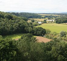Countryside from top of Goodrich Castle by Grace Johnson