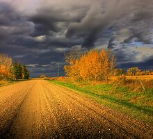 Country Road by Michelle Burton