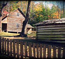 Cabin - Cades Cove, Tennessee by Sam Warner