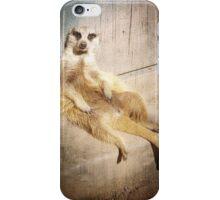 Funny Baby Meerkat Lounging, Grunge iPhone Case/Skin