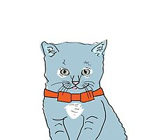 Blue Kitten with Orange Bow by Christianna Pierce