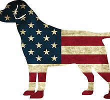 American Dog by ericbracewell