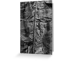 Grass against a rock wall Greeting Card