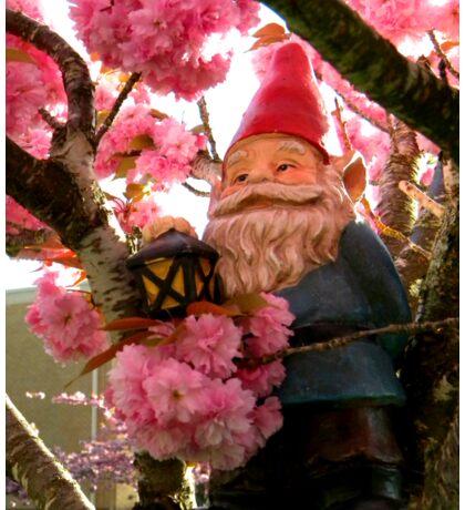 Pink Canopy Gnome Sticker
