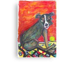 Black Dog_ Green Ball Canvas Print
