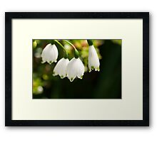 LILY ELITE Framed Print