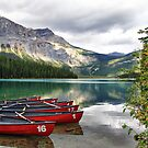 Emerald Lake, Yoho National Park by Teresa Zieba