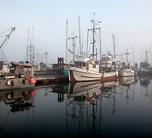 Fisherman's Wharf by Wendi Donaldson
