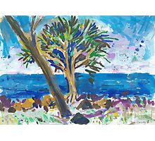 Bargara Photographic Print