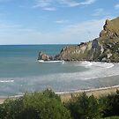 Castlerock - Castlepoint New Zealand by niggle