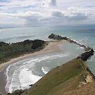 Castlerock ( 2 ) - Castlepoint New Zealand by niggle