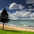 Zeally Bay at Torquay by Darren Stones