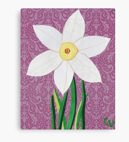 Narcissus pseudonarcissus Canvas Print