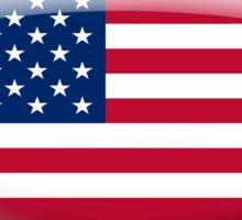 United States Flag Glass Oval Die Cut Sticker Sticker