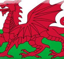 Wales Flag Glass Oval Die Cut Sticker Sticker