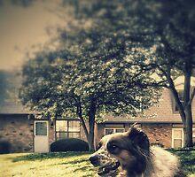 mans best friend by 324heathers