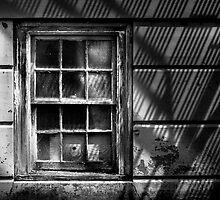 Window Under Fire Escape by Michel Godts