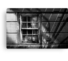 Window Under Fire Escape Canvas Print
