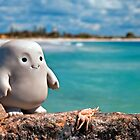 Taf on the Rocks by Pene Stevens