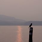 Sunrise on Lake Maggiore by hjaynefoster
