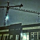 cranes in the night by 324heathers
