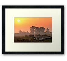 The herder 2 Framed Print