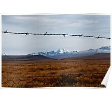 Rabbit Fence Poster