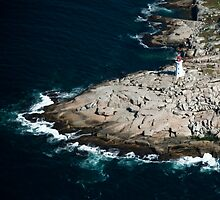 Peggy's Cove Lighthouse by Charles Plant