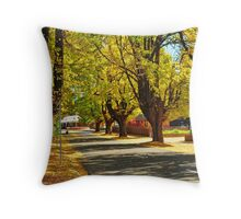 Autumn Colours in Bright Throw Pillow