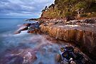 Noosa National Park by John Dekker