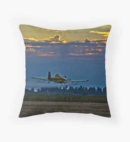 Morning Sortie Throw Pillow