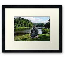NA672-Meditation Framed Print