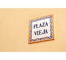 Antique portuguese tiles. Photographic Print