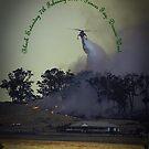 Erickson Sky-Crane fighting bushfire near Drouin by Bev Pascoe