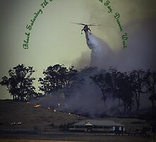 Erickson Sky-Crane fighting bushfire near Drouin by Bev Pascoe