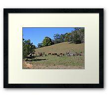 An Aussie Rural Landscape Framed Print