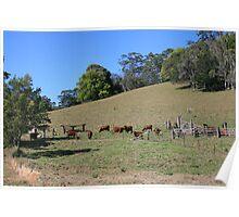 An Aussie Rural Landscape Poster
