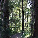 Bush Lane Aussie Style  by aussiebushstick