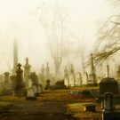 Morning Graveyard Fog by gothicolors