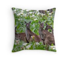 Kangaroos in the Tuart Forest Throw Pillow