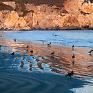 Avila Beach by Renee D. Miranda
