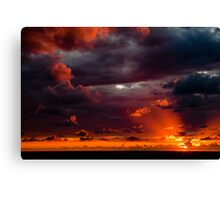nature's own ART Canvas Print