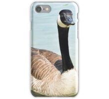 Fowl iPhone Case/Skin
