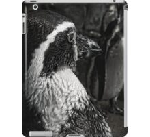Humboldt Penguin, Black and White iPad Case/Skin